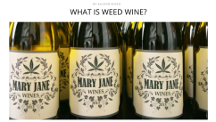 http://thebacklabel.com/what-is-weed-wine/